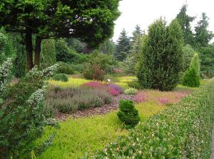 Den eigenen Garten schön gestalten