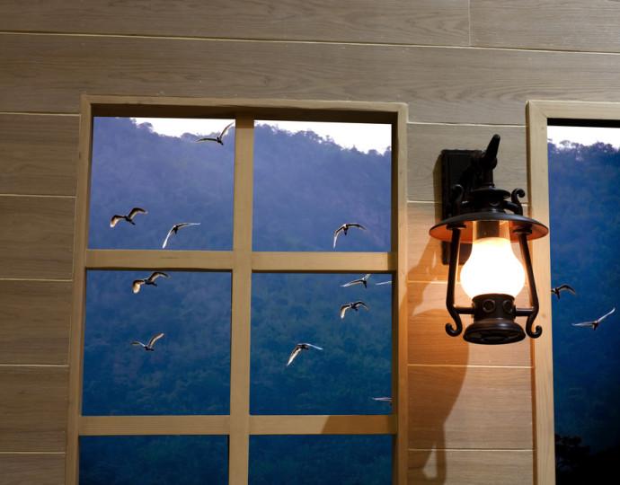 photodune-4921661-window-s.jpg
